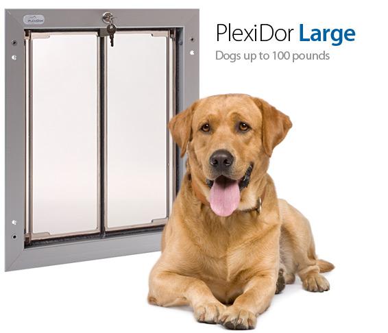 Large PlexiDoor Wall Mount Pet Door